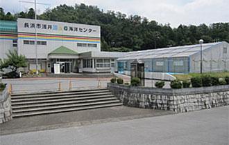 長浜市浅井B&G海洋センターの画像