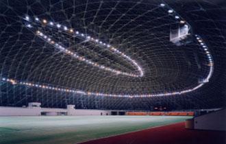 長浜バイオ大学ドーム(滋賀県立長浜ドーム)の画像
