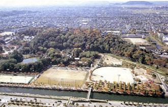 金亀公園の画像