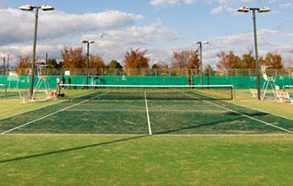 弾正公園テニスコートの画像