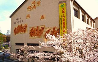 滋賀県立スポーツ会館の画像